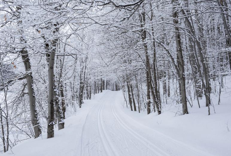 Chemin sous la neige au Québec Noce de rêve by Flovinno