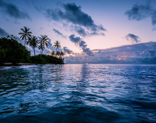 Mer et palmiers aux Antilles Noce de rêve by Flovinno
