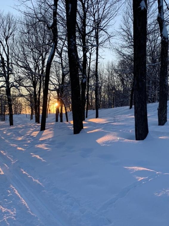 Soleil couchant à travers les arbres et la neige Noce de Rêve by Flovinno