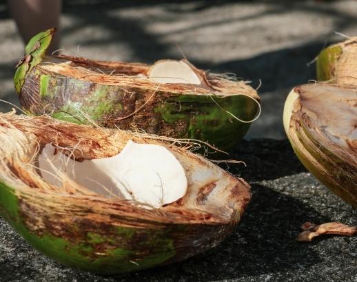 Noix de coco aux Antilles Noce de Rêve by Flovinno