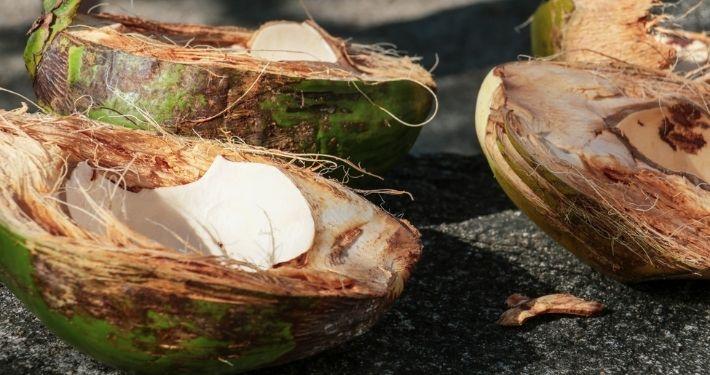 Noix de coco à Sainte Lucie Noce de Rêve by Flovinno
