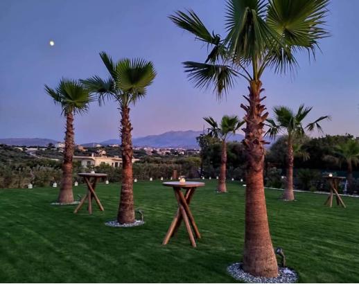Soirée autour des palmiers Noce de rêve by Flovinno